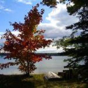 lake-scene-1